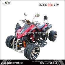 Kawasaki 250cc CEE Quad / Racing ATV con 14 pulgadas de rueda de aleación de agua del motor refrigerado