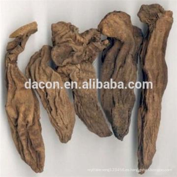 polvo de extracto de raíz de garra del diablo con 1% -5% de Harpagoside