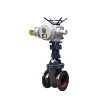 grey iron motorized parallel double disc gate valve makeup china supplier