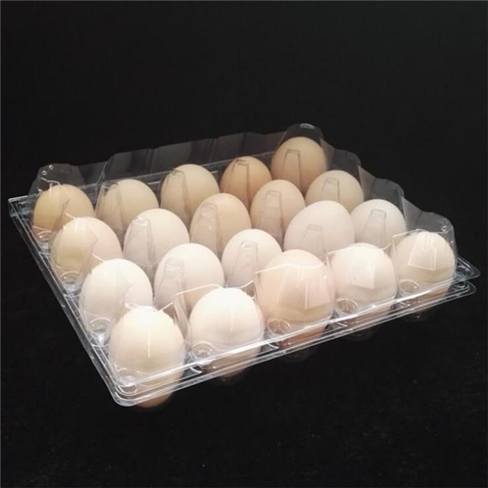 Plastic Henapple Egg Tray
