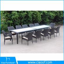 Tabela e cadeiras do Rattan de Seaters 12 da mobília do jardim ajustadas
