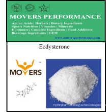 Fourniture Supplément nutritif de haute qualité Ecdysterone