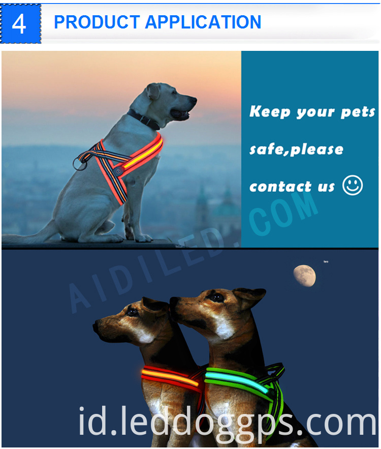 Light Up Dog Harness
