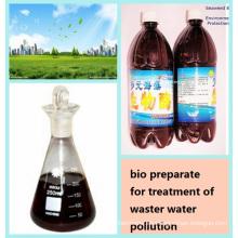 Algas Agente Bio para el Tratamiento de Contaminación de Aguas Residuales