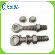 Hot DIP Galvanized Carbon Steel Eye Bolt/Anchor Eye Bolt DIN444