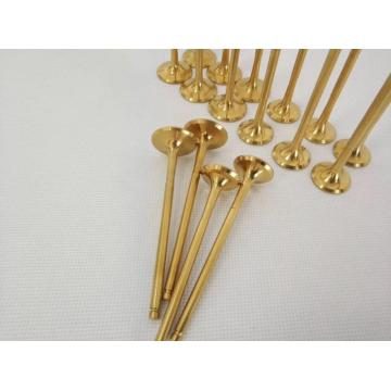Bahan Titanium Alloy Racing Car Engine Valve