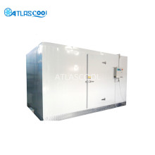 Industrial Walk in Blast Chiller Blast Freezer
