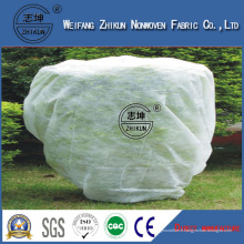 Tissu non-tissé stabilisé UV de 3% pp pour l'agriculture