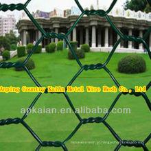 Hebei anping KAIAN malha hexagonal de dupla torção