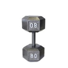 80LB ferro fundido Hex Dumbbell