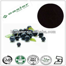 Natural GMP hot sale Anthocyanidin10% UV european bilberry extract powder