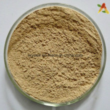 Natural Plant Extract Chlorogenic Acids
