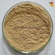 Grüner Kaffeebohnextrakt Chlorogensäurepulver
