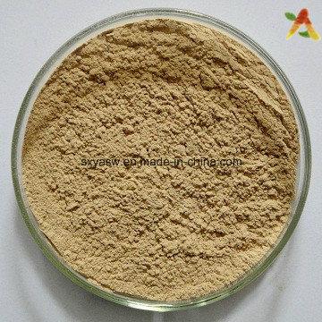 Extracto de Planta Natural de Acidos Clorogénicos