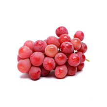fresh red globe grapes for sale red globe grapes  yunnan red grape