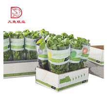 Custom logo factory direct print vegetable packing box designs
