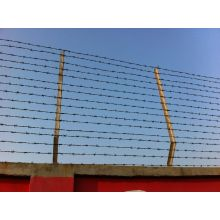High Quality Double Twisted Barbed Wire