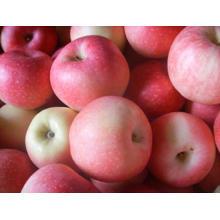 Maçã doce, da China, FUJI Apple