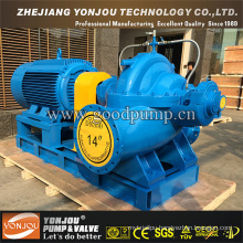Single-Stage Double Suction Centrifugal Pump with SGS