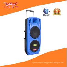 Double 10 '' Profesional Stag altavoz con luz colorida F73