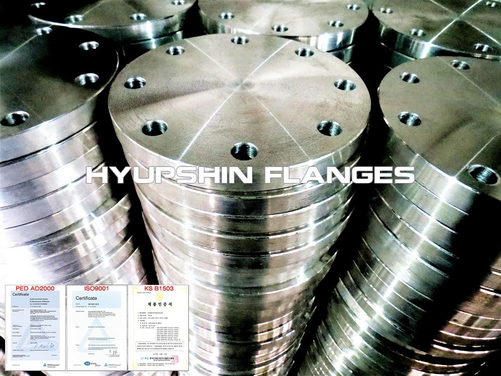 Hyupshin Flanges Blind En1092 1