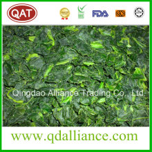 IQF Frozen Organic Diced Cut Spinach From 2016 Crop