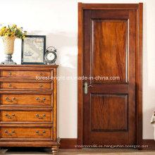 Puerta principal, puerta de madera, solo, diseño