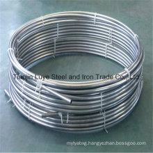 AISI 304 Stainless Steel Capillary Pipe/Tube Good Quality