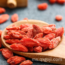New Certified Organic Lycium Goji Berry Dry