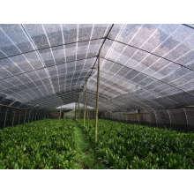 Tela de pára-sol como rede da casa verde