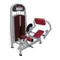 Fitness Equipment for Back Extension (M5-1017)