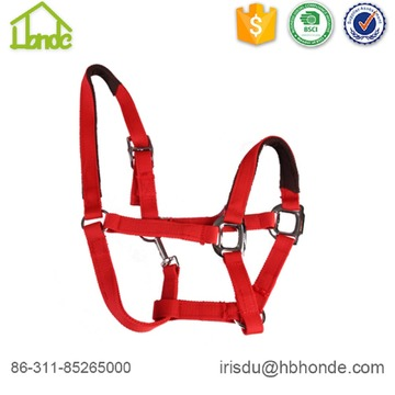 Headcollar at binme at yular