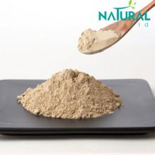 Anti Oxidation Seaweed extract kelp fucoidan powder