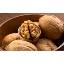 Natural China Inshell Walnuts