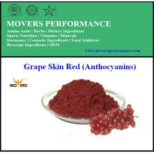 Extracto natural puro de la piel de la uva de la alta calidad (Anthocyanins)