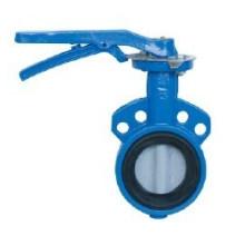 Эпоксидное покрытие Клапан-Бабочка вафли (D71X)