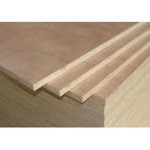 Hot! China Commercial Plywood