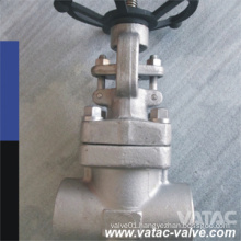 API 602 OS&Y F304 Gate Valve with Screwed Ends