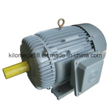 Y Series 3-Phase Electric Motors for Industry with Ce