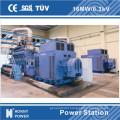 6.3kv, 11kv, 10.5kv, 13.8kv High Voltage Generator Power Plant 1000rpm