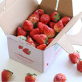 Colorful Print Dry Empty Fruit Strawberry Box