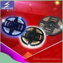 Indoor DC12V Decoration LED Strip Lighting