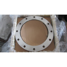 C22.8 BS En1092-1 DIN 2632 Forging Flanges, P245gh P250gh DIN Steel Flanges