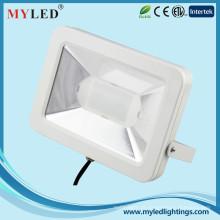 Luz de inundação ao ar livre do diodo emissor de luz com montagem 30W para a iluminação do edifício com certificação do CE RoHS