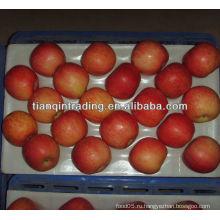 Поставщик яблок