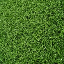 international field SGS green mini golf carpet grass