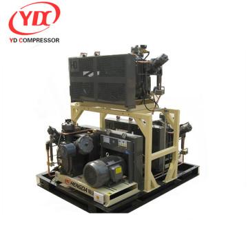 portable air kompressor zum verkauf fusheng schraubenkompressor compact cng kompressor für den heimgebrauch (2m3 / h bis 5m3 / h)