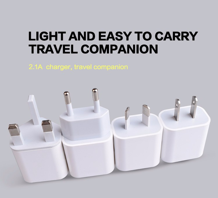 usb travel charger (1)