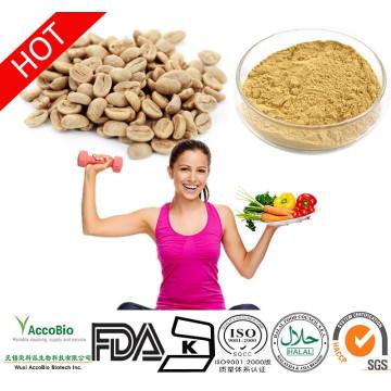 Extrato de grão de café verde puro com GCA, 800 mg, cápsulas vegetais, contagem de 60. Contém 50% de ácido clorogênico ARABICA