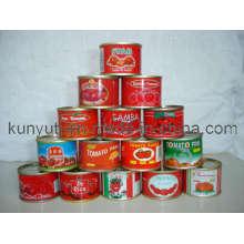 Pâte à la tomate en boîte à haute qualité